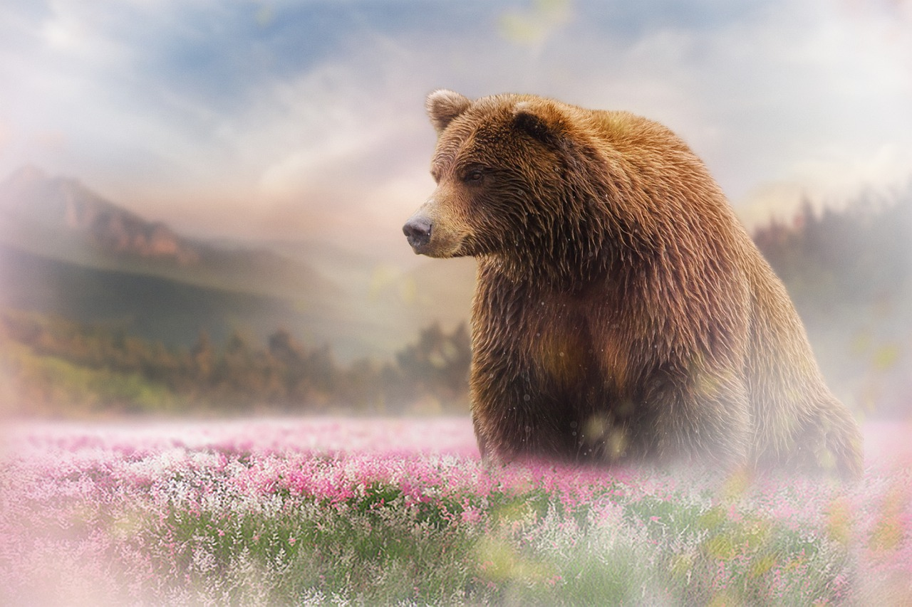 A brown bear in a field of flowers. Spirit Animal. Image by Bianca van Dijk from Pixabay
